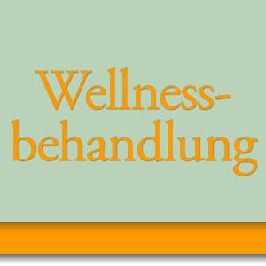 Angebote Wellnessbehandlungen